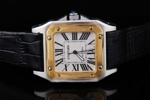 Cool Cartier Santos 100 Automatic Two Tone with White Dial-Brown Strap AAA Watches [W4L6]