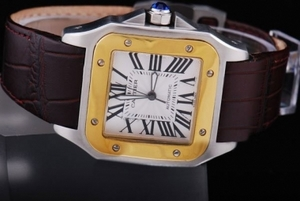 Popular Cartier Santos 100 Automatic Two Tone with White Dial AAA Watches [P5N8]